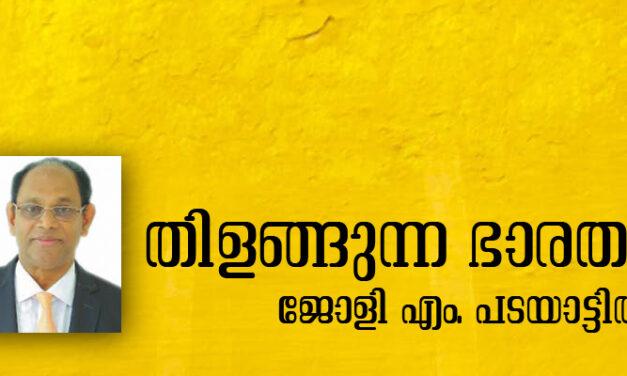 തിളങ്ങുന്ന ഭാരതം (ജോളി എം. പടയാട്ടില്)