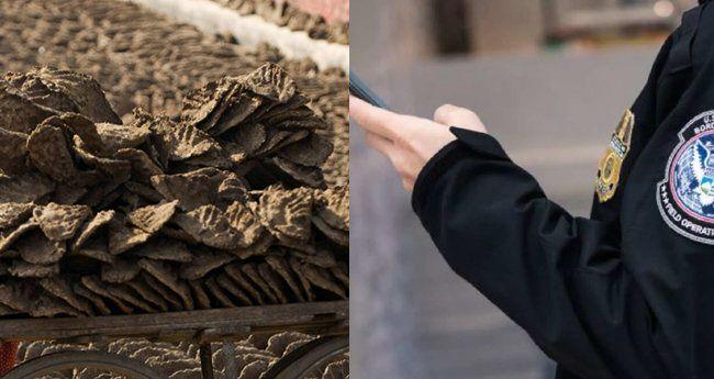 യുഎസിലെത്തിയ ഇന്ത്യക്കാരന്റെ ബാഗില് ചാണകവറളി; പിടികൂടി നശിപ്പിച്ച് കസ്റ്റംസ്